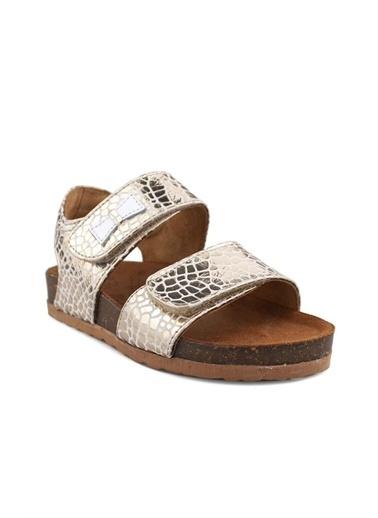 Cicibebe Crocodil Deri Kız Çocuk Sandalet Bronz